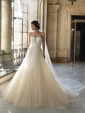 2021年 最新作/PRONOVIAS PRIVEE